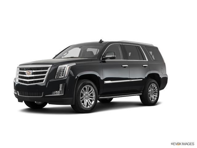 2019 Cadillac Escalade Vehicle Photo in Green Bay, WI 54304