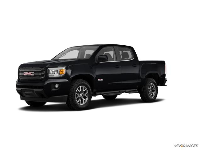 2019 GMC Canyon Vehicle Photo in Green Bay, WI 54304