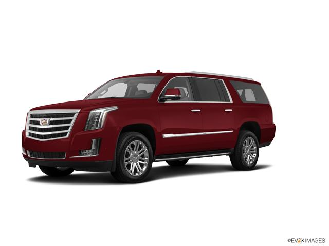 2019 Cadillac Escalade ESV Vehicle Photo in Green Bay, WI 54304