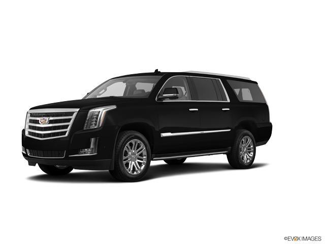 2019 Cadillac Escalade ESV Vehicle Photo in Madison, WI 53713