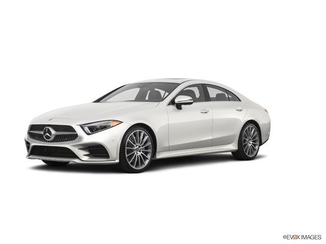2019 Mercedes-Benz CLS Vehicle Photo in Houston, TX 77079