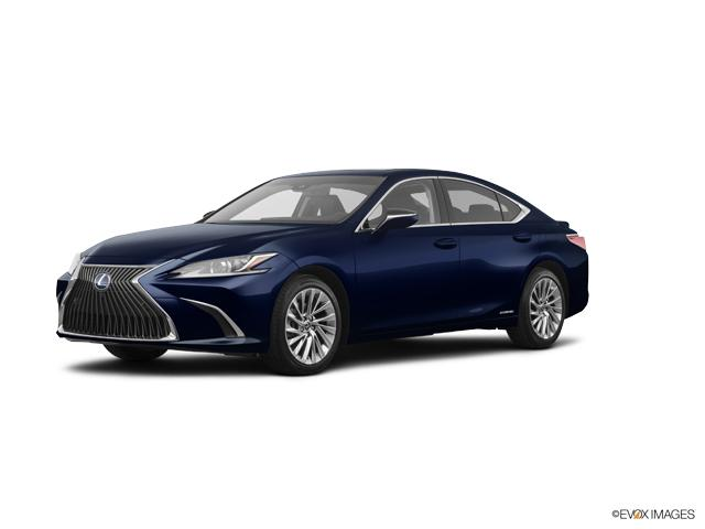 2019 Lexus ES 300h Vehicle Photo in Appleton, WI 54913