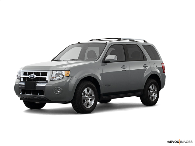 2008 Ford Escape Vehicle Photo in Detroit Lakes, MN 56501