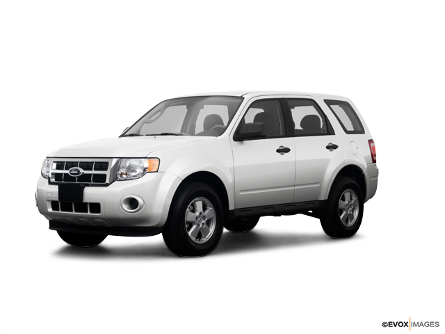 2009 Ford Escape Vehicle Photo in Lexington, TN 38351