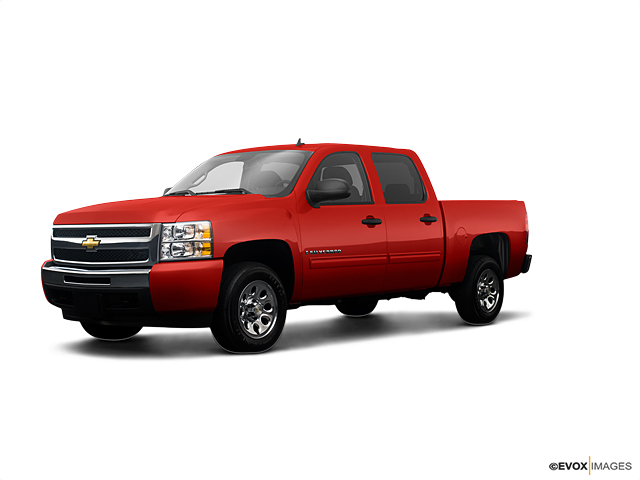 2009 Chevrolet Silverado 1500 Vehicle Photo in Tuscumbia, AL 35674