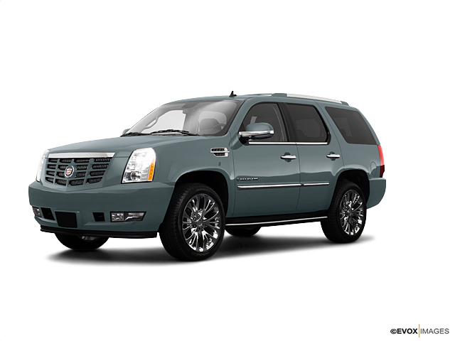 2009 Cadillac Escalade Vehicle Photo in Akron, OH 44320