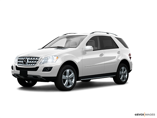 2009 Mercedes-Benz M-Class Vehicle Photo in Charleston, SC 29407