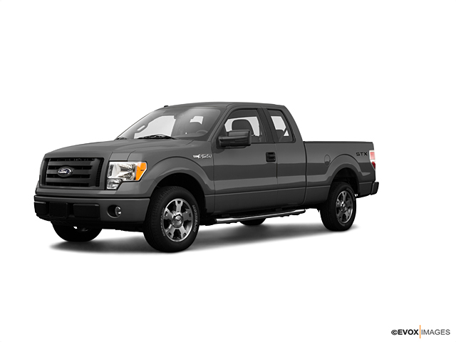 2009 Ford F-150 Vehicle Photo in Crosby, TX 77532