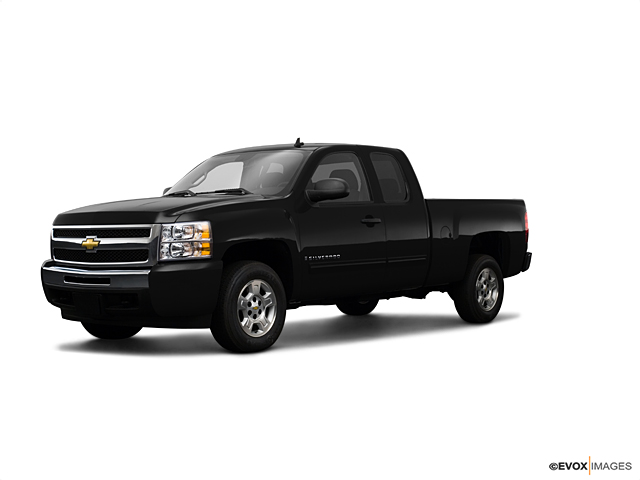 2009 Chevrolet Silverado 1500 Vehicle Photo in Smyrna, DE 19977