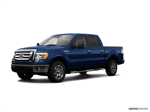 2009 Ford F-150 Vehicle Photo in Danville, KY 40422