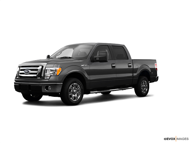 2009 Ford F-150 Vehicle Photo in Denver, CO 80123