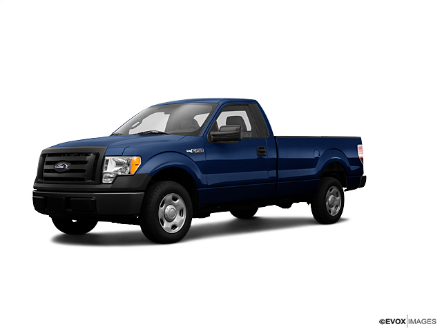 2009 Ford F-150 Vehicle Photo in Owensboro, KY 42303