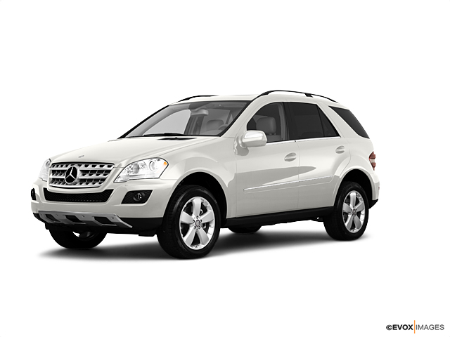 2010 Mercedes-Benz M-Class Vehicle Photo in Edinburg, TX 78542