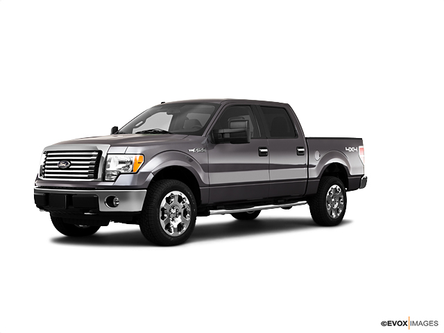 2010 Ford F-150 Vehicle Photo in Fort Worth, TX 76177