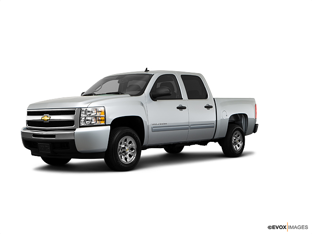 2010 Chevrolet Silverado 1500 Vehicle Photo In Delta, CO 81416