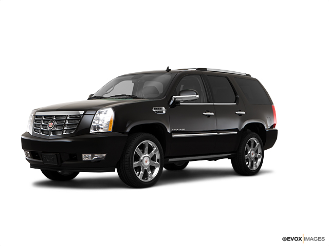 2010 Cadillac Escalade Vehicle Photo in Colorado Springs, CO 80905