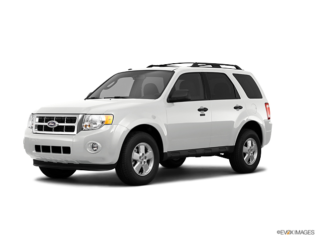 2011 Ford Escape Vehicle Photo in Margate, FL 33063