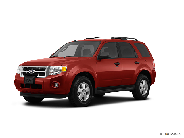 2012 Ford Escape Vehicle Photo in Medina, OH 44256