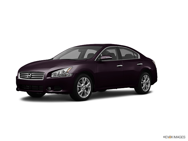 2012 Nissan Maxima Vehicle Photo in Beaufort, SC 29906