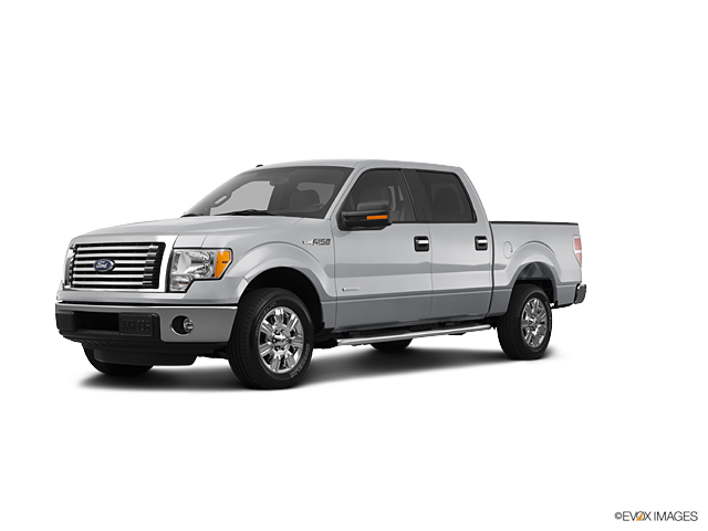 2012 Ford F-150 Vehicle Photo in Darlington, SC 29532