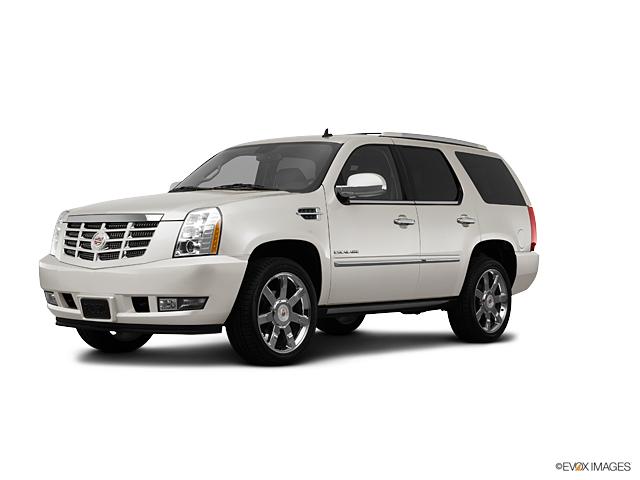 2013 Cadillac Escalade Vehicle Photo in Gainesville, GA 30504