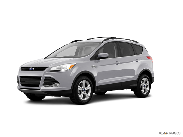 2013 Ford Escape Vehicle Photo in Elyria, OH 44035