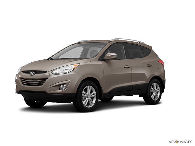 2013 Hyundai Tucson Vehicle Photo in Newark, DE 19711