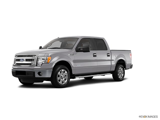 2013 Ford F-150 Vehicle Photo in Springfield, MO 65807
