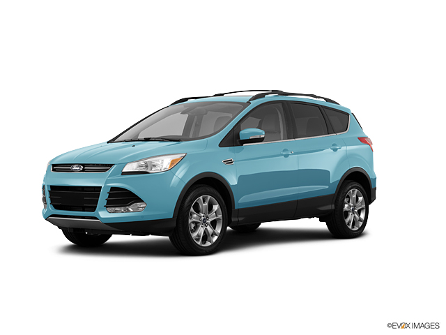 2013 Ford Escape Vehicle Photo in Greenville, NC 27834