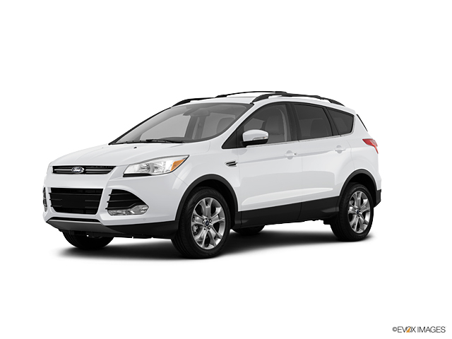 2013 Ford Escape Vehicle Photo in Jasper, GA 30143