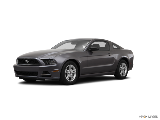 2014 Ford Mustang Vehicle Photo in San Antonio, TX 78254