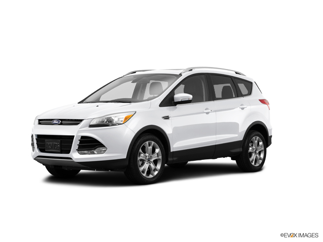 2014 Ford Escape Vehicle Photo in Dallas, TX 75244