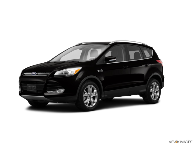 2014 Ford Escape Vehicle Photo in Rockford, IL 61107