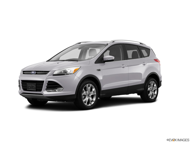 2014 Ford Escape Vehicle Photo in Edinburg, TX 78539