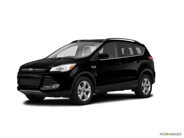 2014 Ford Escape Vehicle Photo in Pahrump, NV 89048
