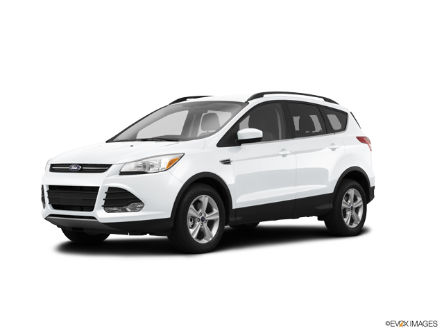 2014 Ford Escape Vehicle Photo in West Harrison, IN 47060
