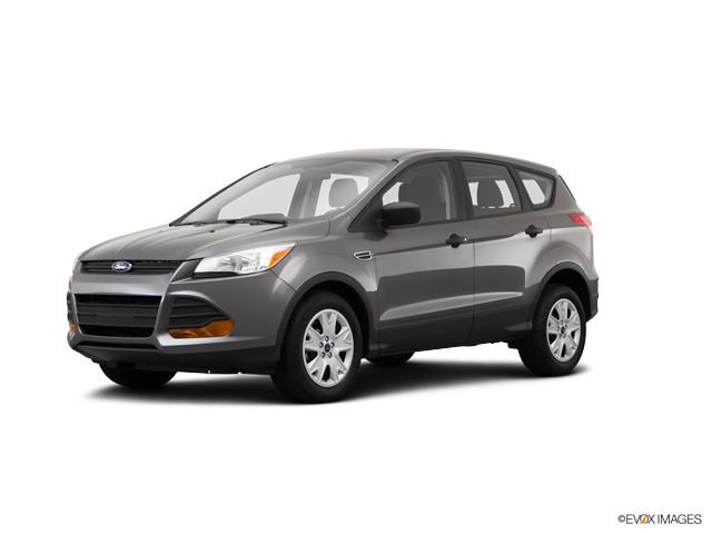 2014 Ford Escape Vehicle Photo in Poughkeepsie, NY 12601