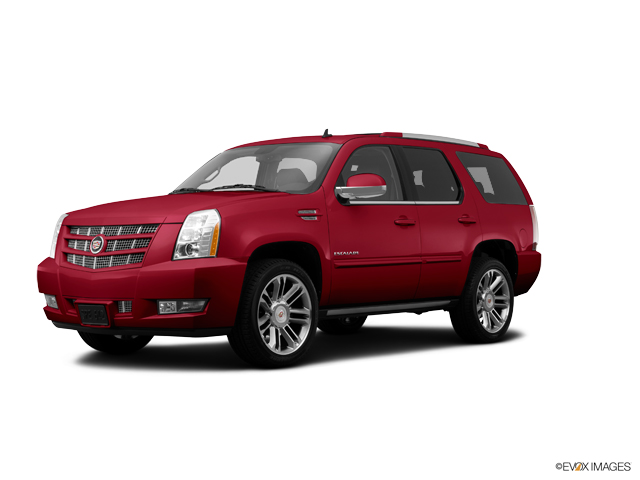 2014 Cadillac Escalade Vehicle Photo in Rosenberg, TX 77471