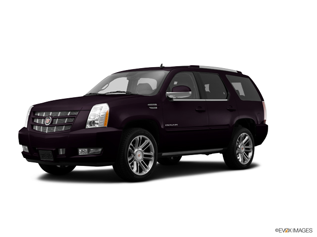 2014 Cadillac Escalade Vehicle Photo in Greeley, CO 80634
