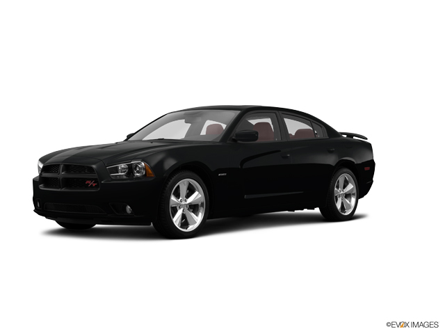 2014 Dodge Charger Vehicle Photo in Rosenberg, TX 77471