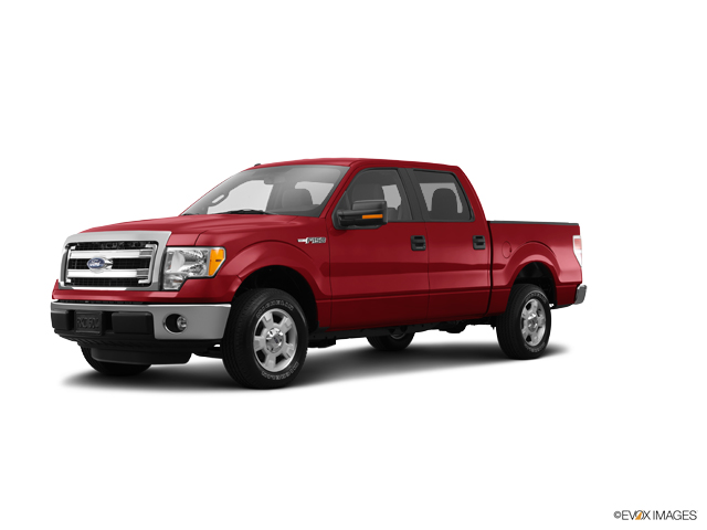 2014 Ford F-150 Vehicle Photo in Oshkosh, WI 54901