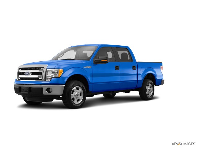 2014 Ford F-150 Vehicle Photo in West Harrison, IN 47060