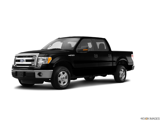 2014 Ford F-150 Vehicle Photo in Rosenberg, TX 77471