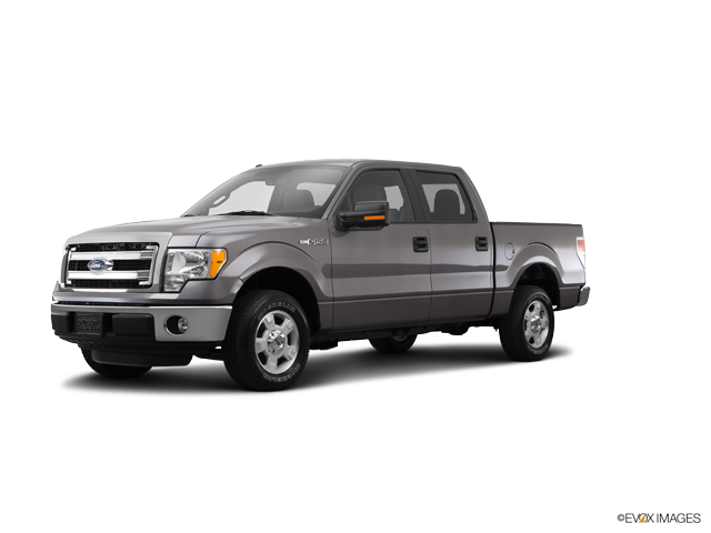 2014 Ford F-150 Vehicle Photo in Burlington, WI 53105