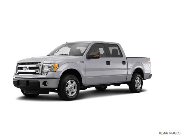 2014 Ford F-150 Vehicle Photo in Clinton, MI 49236