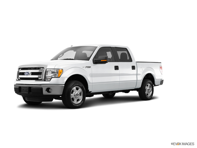 2014 Ford F-150 Vehicle Photo in Owensboro, KY 42303