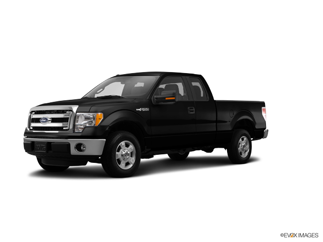2014 Ford F-150 Vehicle Photo in Vincennes, IN 47591