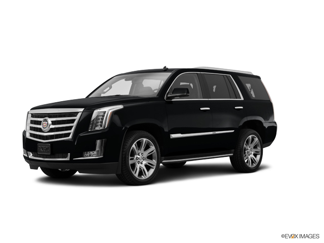 2015 Cadillac Escalade Vehicle Photo in Gainesville, GA 30504