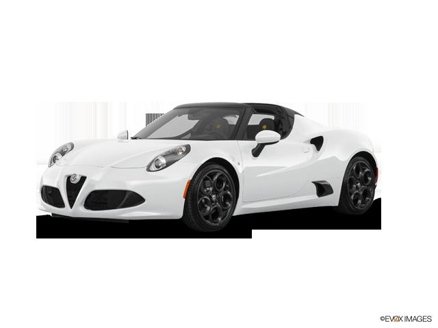 4c Spider White